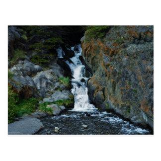 McCugh Creek Inspiration Postcard
