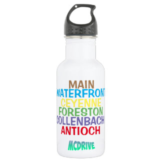 MCDrive Towns Stainless Steel Water Bottle