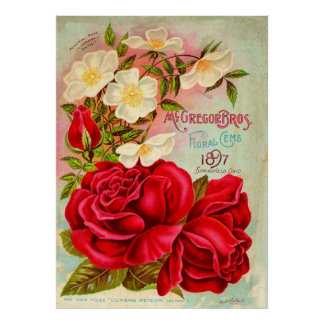 McGregor Bros. Floral Gems Advertisement Print