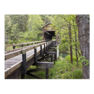 McKee covered bridge, Jacksonville, Oregon Postcard