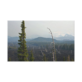 McKenzie Pass Oregon Gallery Wrapped Canvas