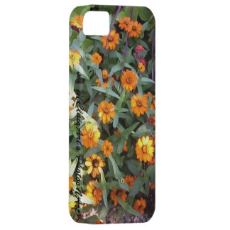 MClairArt's PhotosNArt Gifts iPhone SE/5/5s Case