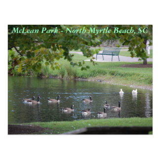 McLean Park - North Myrtle Beach, South Carolina Postcards