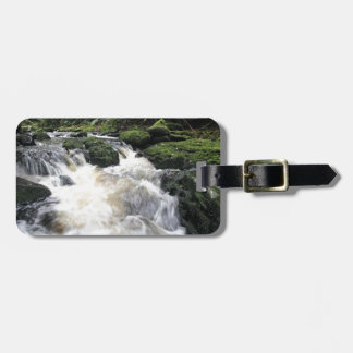 Mclean River New Zealand Luggage Tags