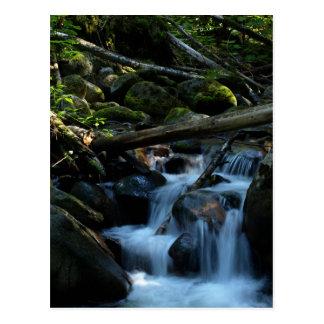 McPhee Creek, Castlegar, British Columbia Postcard