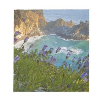 McWay escénico cae las caídas en la playa y Libreta Para Notas