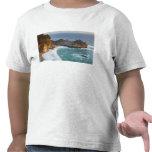 McWay escénico cae las caídas en la playa y los 2 Camiseta