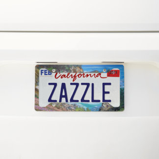 McWay Falls -  License Plate Frame