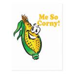 Me SO Corny  corn  cob Postcard