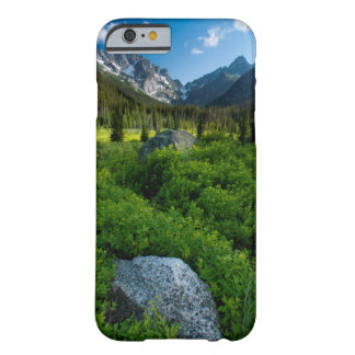 Meadow and Mt. Stuart Barely There iPhone 6 Case