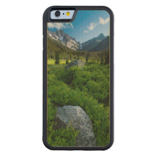 Meadow and Mt. Stuart Carved Maple iPhone 6 Bumper Case