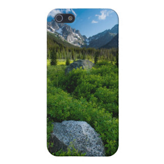 Meadow and Mt. Stuart Case For iPhone SE/5/5s