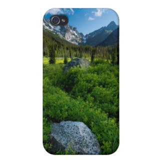 Meadow and Mt. Stuart iPhone 4/4S Cases