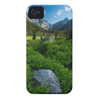 Meadow and Mt. Stuart iPhone 4 Cover