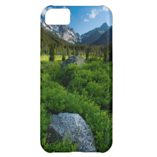 Meadow and Mt. Stuart iPhone 5C Cover
