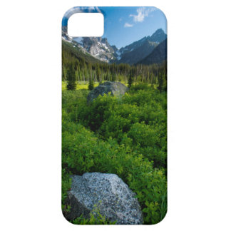 Meadow and Mt. Stuart iPhone SE/5/5s Case