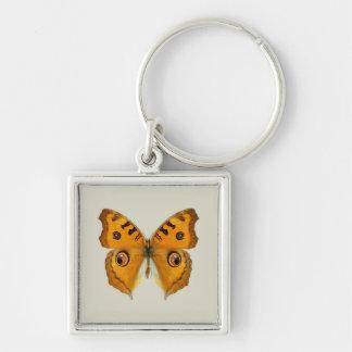 Meadow Argus Butterfly Keychain
