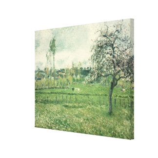 Meadow at Eragny, 1885 Canvas Print