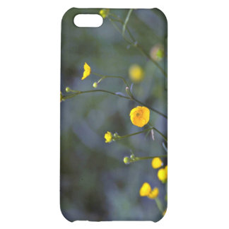 Meadow buttercup (Ranunculus Acris) flowers Case For iPhone 5C