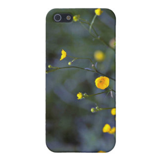 Meadow buttercup (Ranunculus Acris) flowers Covers For iPhone 5