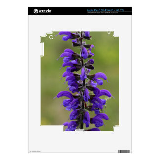 Meadow clary or meadow sage iPad 3 decal