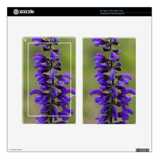 Meadow clary or meadow sage kindle fire decals