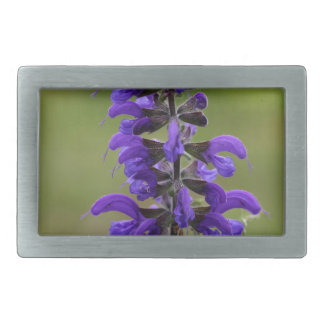 Meadow clary or meadow sage rectangular belt buckle