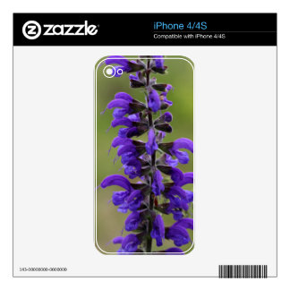 Meadow clary or meadow sage skins for iPhone 4S