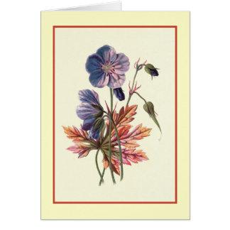 """Meadow Cranesbill"" Botanical Illustration Card"