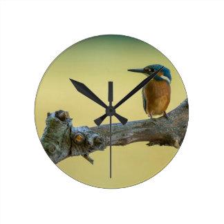 Meadow Dreams Bird #1 Round Clock