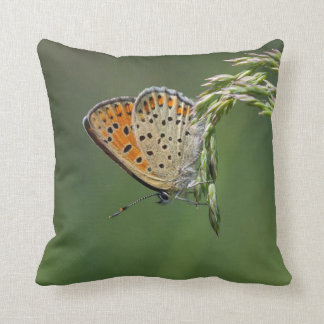 Meadow Dreams Butterfly #2 Throw Pillow