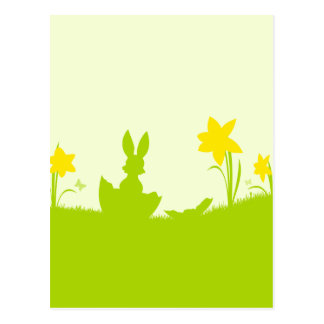 Meadow Easter bunny narcissuses Post Cards