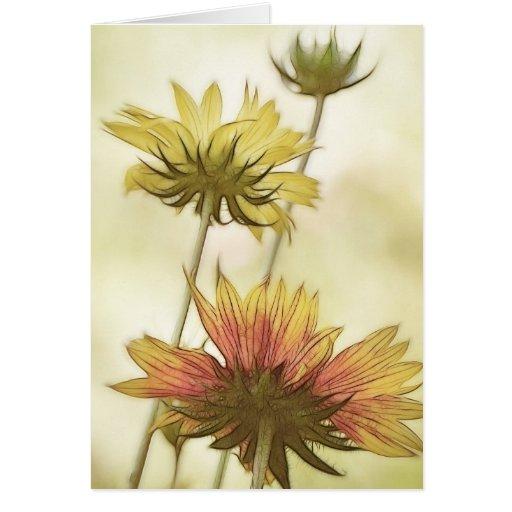 Meadow Fantasy - Gaillardia Greeting Card