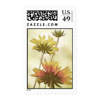 Meadow Fantasy - Gaillardia Postage Stamps