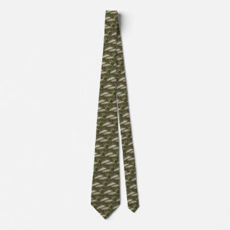 Meadow Grass Wetlands Coastal Marsh Field Tie