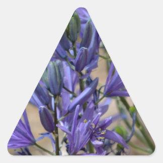 Meadow Hyacinth Triangle Stickers