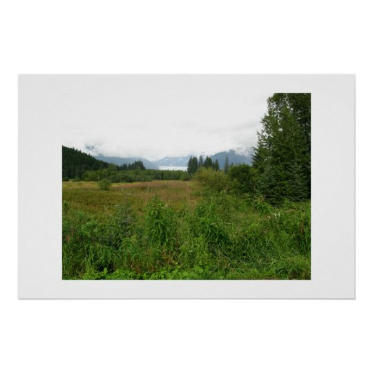Meadow in Alaska with Mendenhall Glacier Poster