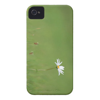 Meadow iPhone 4 Case