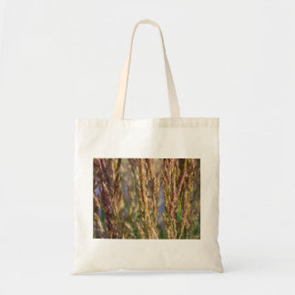 Meadow karl foerster grass close-up nature photo bags