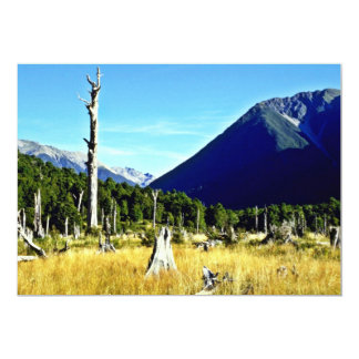 Meadow, Nelson Lakes National Park, South Island 5x7 Paper Invitation Card