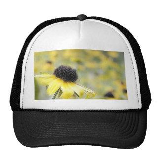 Meadow of Black Eyed Susans Trucker Hat
