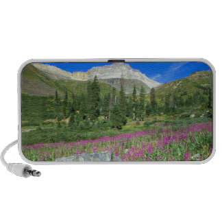 Meadow of fireweed and Mt. Sneffels in Mt. iPod Speakers