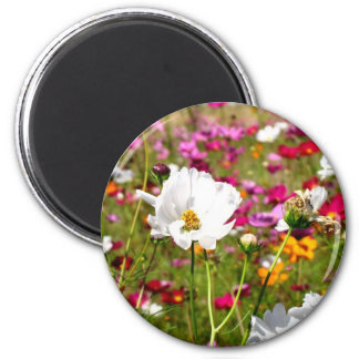 Meadow of Flowers Refrigerator Magnets