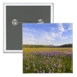 Meadow of penstemon wildflowers in the 2 2 inch square button