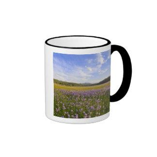 Meadow of penstemon wildflowers in the 2 ringer coffee mug