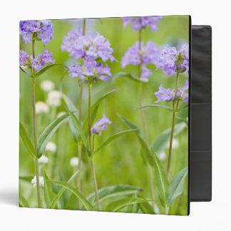 Meadow of penstemon wildflowers in the 3 ring binder