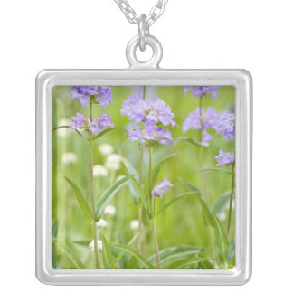 Meadow of penstemon wildflowers in the silver plated necklace