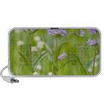 Meadow of penstemon wildflowers in the portable speakers