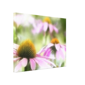 Meadow of Purple Coneflowers Stretched Canvas Print