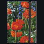 "Meadow of Summer Flowers with Poppies iPad Air Case<br><div class=""desc"">Meadow of Summer Flowers with Poppies  iPad cover. VIRGINIA5050,  custom-designed products and gifts at www.zazzle.com/virginia5050*,  PAUL KLEE GIFT SHOP at www.zazzle.com/paulkleegiftshop*,  INTERNATIONAL GIFTS at zazzle.com/InternationalGifts,  RETIREMENT GIFT STORE at zazzle.com/RetirementGiftStore,  BIRTHDAY GIFT STORE at zazzle.com/BirthdayGiftStore,  I LOVE GIFT STORE at zazzle.com/ILoveGiftStore*,  and FLORIDA GIFT STORE at zazzle.com/FloridaGiftStore*</div>"